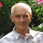 Владимир Лепесток аватар